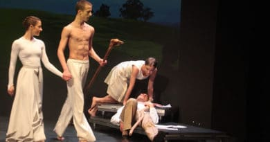 The Ballet of the Sorbisches National Ensemble is Looking for 2 Male Dancers