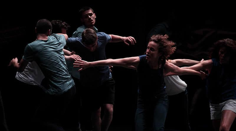 Ballet du Nord is Looking for Male and Female Dancers - audition