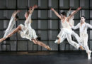 Ballet of the Anhaltisches Theater Dessau is Looking for a Male Dancer