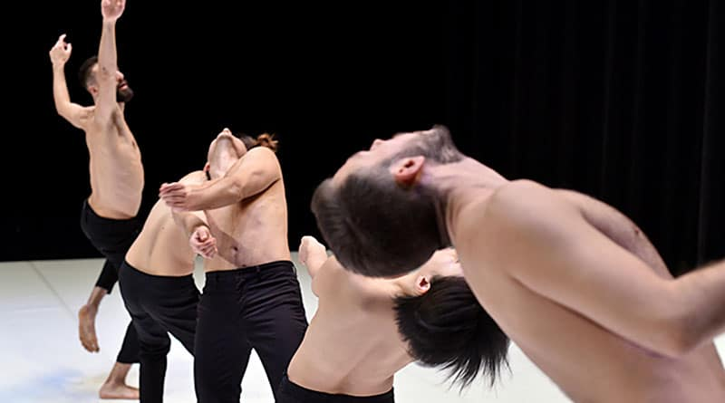 The National Choreographic Center of Rillieux-la-Pape is Looking for a MALE DANCER