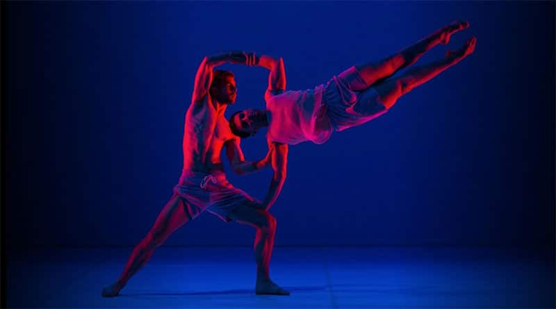 Sydney Dance Company is Looking for Male and Female Dancers