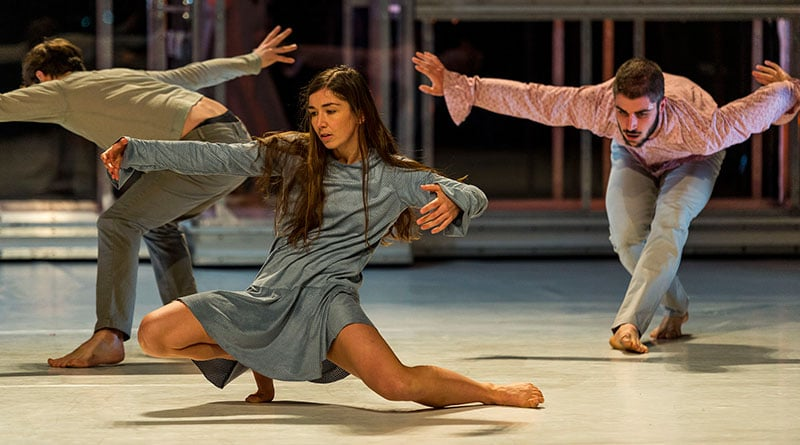 WEE DANCE COMPANY is Looking for Male Dancers for 2017/2018 Season