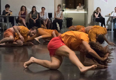 DNA are Searching for Strong Contemporary Dancers for the 2017/18 Season
