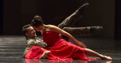 The Ballet of the State Opera Hanover is Looking for Female and Male Dancers