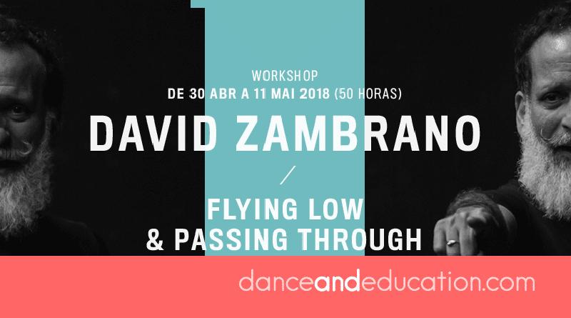 DDD Pro 2018 - David Zambrano (Flying Low & Passing Through)