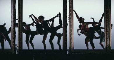 Royal Ballet Flanders is Looking for Professional Male and Female Dancers